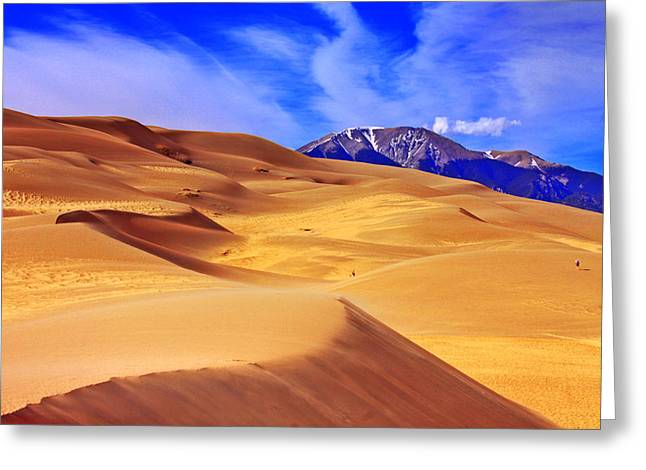 Recently Sold -  - Sanddunes Greeting Cards - Beauty of The Dunes Greeting Card by Scott Mahon