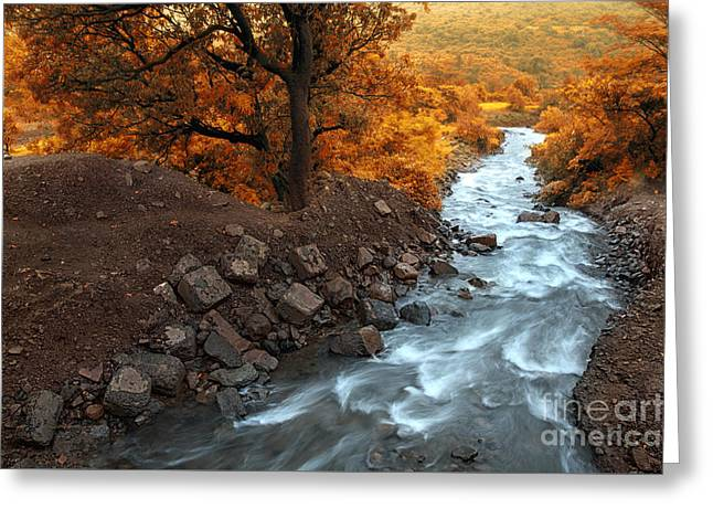 Stones Greeting Cards - Beauty Of The Nature Greeting Card by Charuhas Images