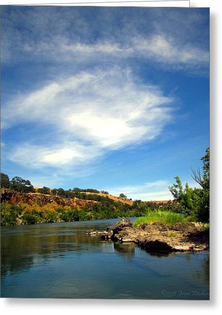 Unique Art Greeting Cards - Beauty On The Sacramento River Greeting Card by Joyce Dickens