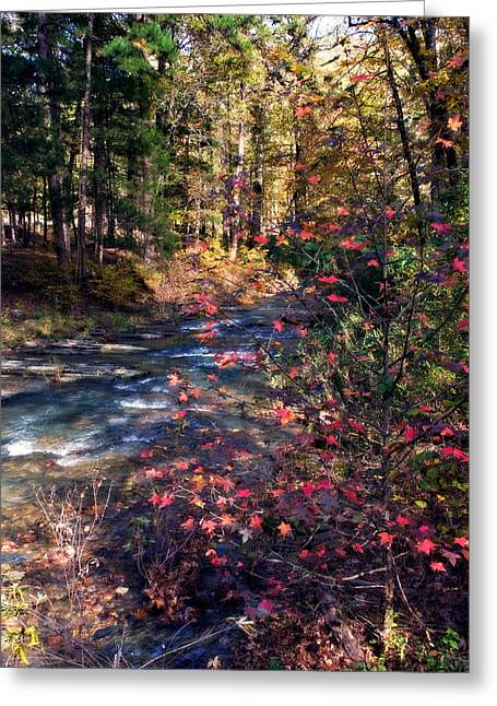 Beavers Bend Park Greeting Cards - Beavers Bend Greeting Card by Lana Trussell