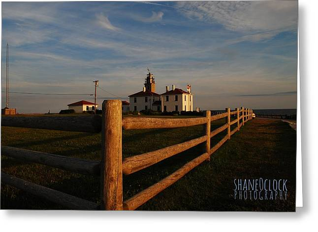 New England Ocean Greeting Cards - Beavertail Greeting Card by Shane Alger