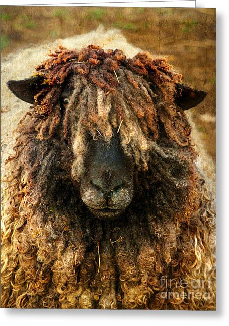 Blackface Greeting Cards - Because Ewe Are Worth It Greeting Card by Linsey Williams