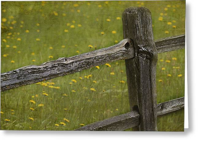 Fence Posts Greeting Cards - Beckoning Greeting Card by Rebecca Cozart