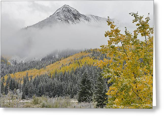 Mountain Road Greeting Cards - Beckwith Mountain Fall Aspens Greeting Card by Dean Hueber