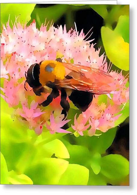Charlotte Greeting Cards - Bee too Flower Greeting Card by Morgan Carter