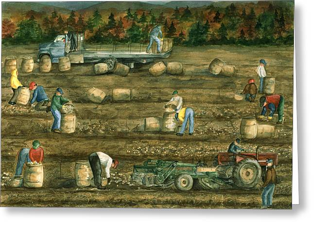Maine Agriculture Greeting Cards - Been there Done that in Aroostook County Greeting Card by Paula Robertson