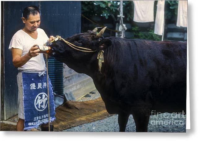 Kobe Photographs Greeting Cards - Beer Guzzler Greeting Card by Bob Phillips