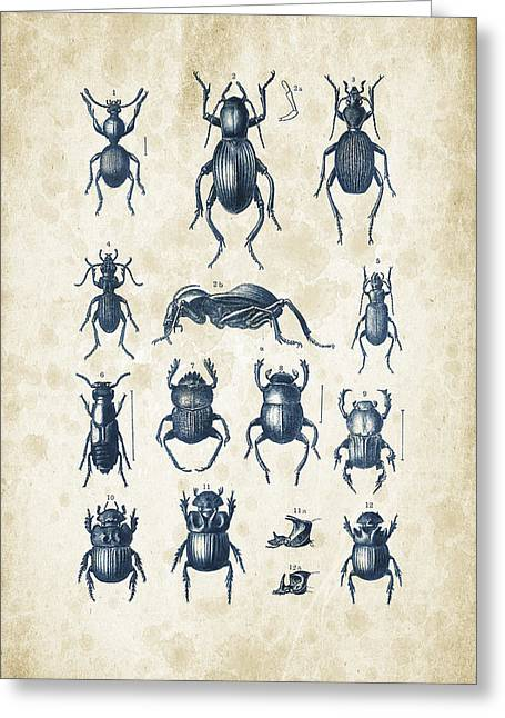 Beetles - 1897 - 01 Greeting Card by Aged Pixel