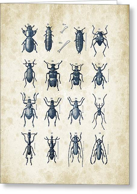 Vintage Books Greeting Cards - Beetles - 1897 - 03 Greeting Card by Aged Pixel