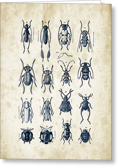 Vintage Books Greeting Cards - Beetles - 1897 - 04 Greeting Card by Aged Pixel