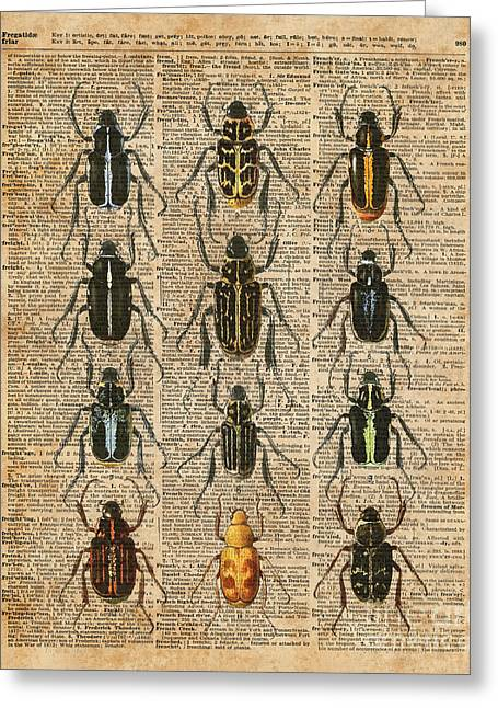 Beetles Bugs Zoology Illustration Vintage Dictionary Art Greeting Card by Jacob Kuch
