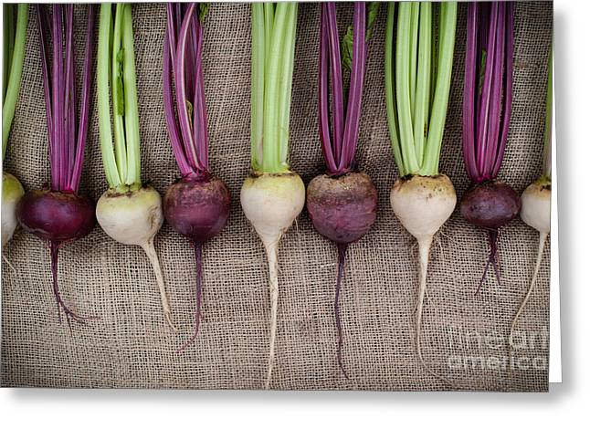 Vulgaris Greeting Cards - Beets Greeting Card by Tim Gainey