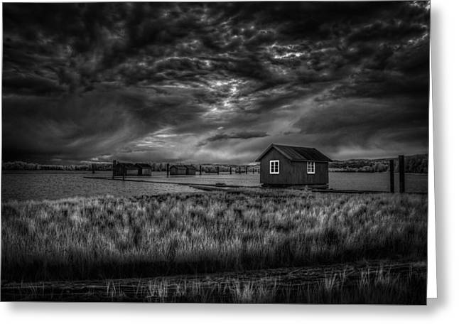Pushing Greeting Cards - Before the storm Greeting Card by Erik Brede