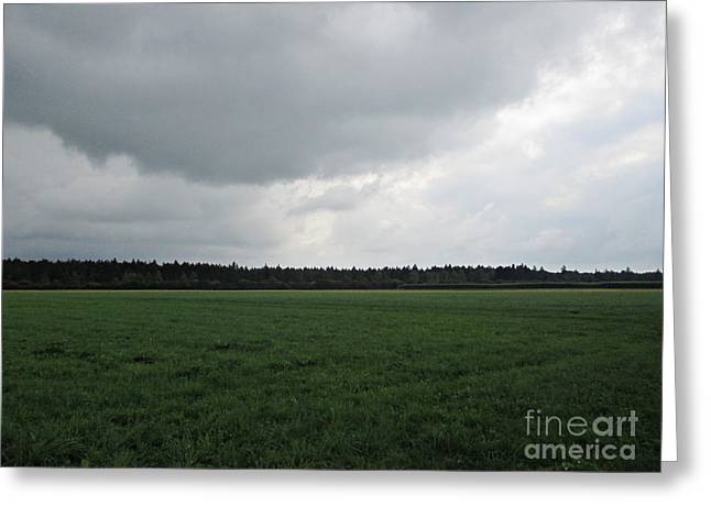 Pastureland Greeting Cards - Before the storm near Ausgburg Greeting Card by Chani Demuijlder