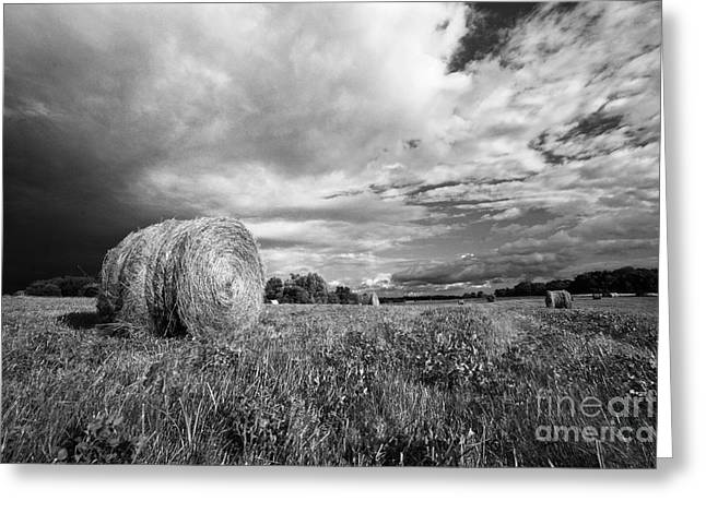 Hay Bales Greeting Cards - Before the Storm Greeting Card by Robert Sherrow