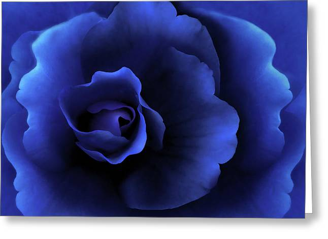 Blue Begonias Greeting Cards - Begonia Floral Dark Secrets Greeting Card by Jennie Marie Schell