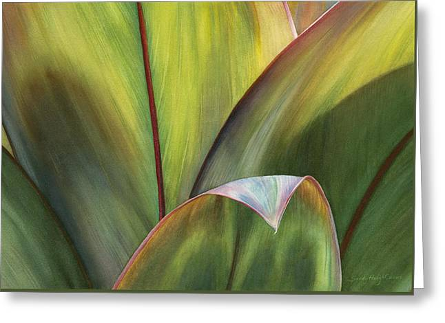 Cordylines Greeting Cards - Beguiling Kauai Greeting Card by Sandy  Haight