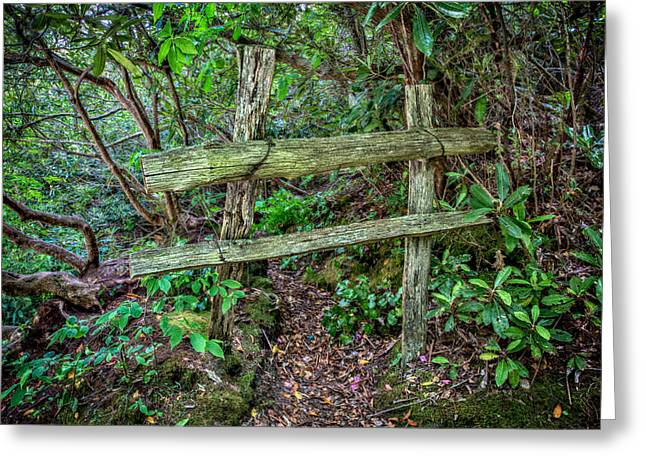 Split Rail Fence Greeting Cards - Behind the Green Fence Greeting Card by John Haldane