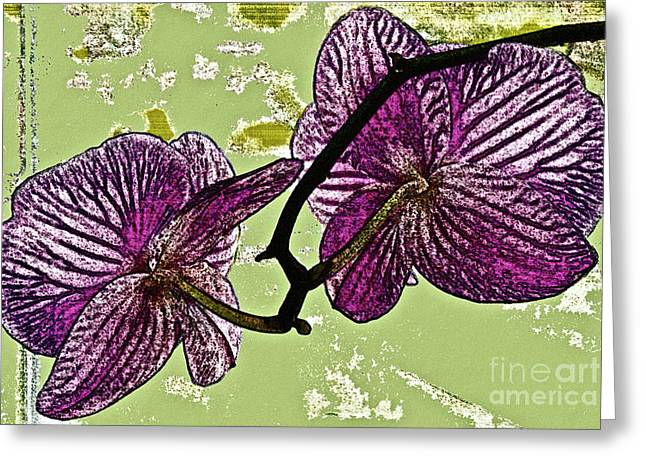 Behind the Orchids Greeting Card by Gwyn Newcombe