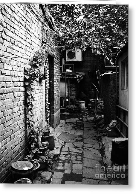 Hutong Greeting Cards - Beijing City 17 Greeting Card by Xueling Zou