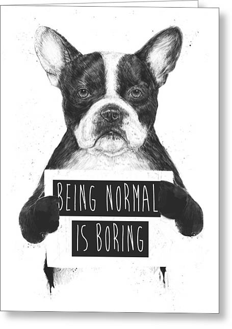 Bulldog Greeting Cards - Being normal is boring Greeting Card by Balazs Solti