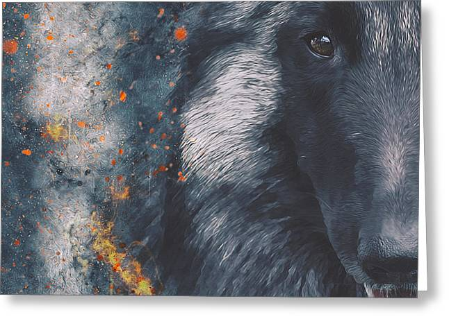 Recently Sold -  - Working Dog Greeting Cards - Belgian Tervuren Artwork Greeting Card by Wolf Shadow  Photography