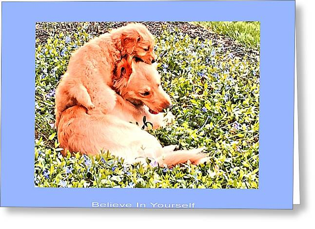 Puppies Photographs Greeting Cards - Believe In Yourself Greeting Card by John Feiser