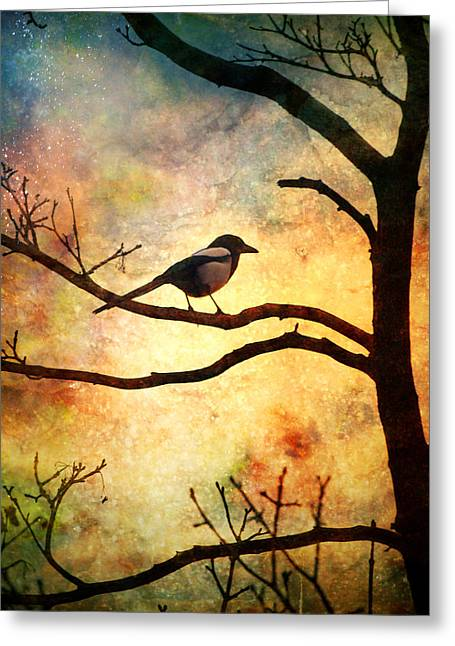 Tara Turner Greeting Cards - Believing in the Morning Greeting Card by Tara Turner