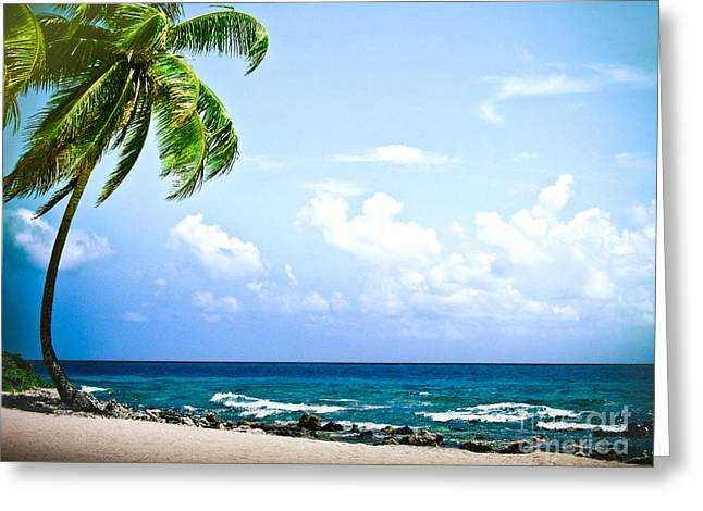 Kelly Greeting Cards - Belize Private Island Beach Greeting Card by Ryan Kelly
