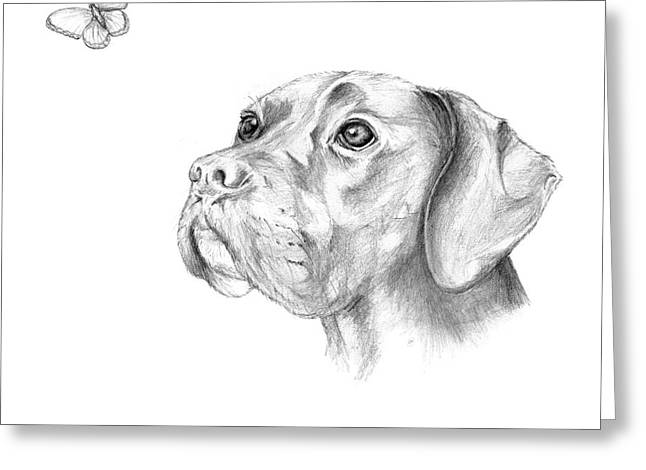 Puppies Drawings Greeting Cards - Bella and the Butterfly Greeting Card by Stacey May