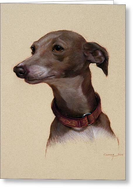 Greyhound Dog Pastels Greeting Cards - Bella Greeting Card by Cuong Nguyen