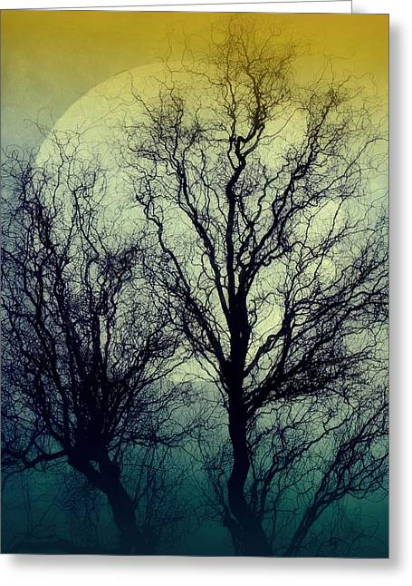 Atmoshperic Greeting Cards - Bella Luna Greeting Card by Patricia Strand