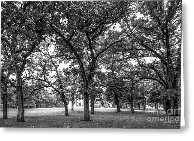 Beloit College Oak Grove Greeting Card by University Icons