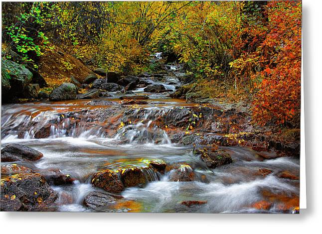 Fall Prints Greeting Cards - Below the Waterfall Greeting Card by Tim Reaves