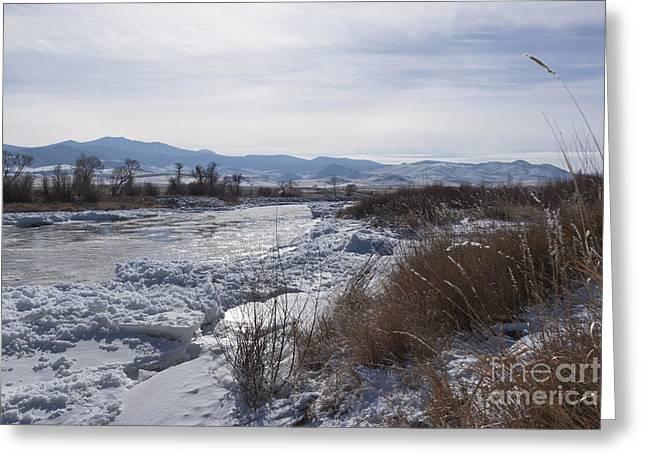 Montana Greeting Cards - Below Zero River Greeting Card by Carolyn Brown