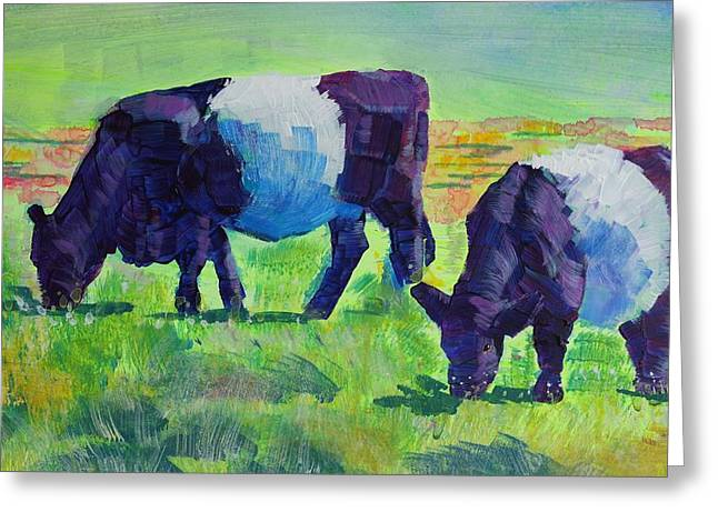 Belt Drawings Greeting Cards - Belted Galloway Cows Grazing Greeting Card by Mike Jory