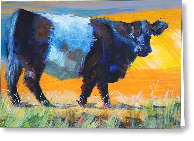 Belt Drawings Greeting Cards - Belted galloway cow side view Greeting Card by Mike Jory