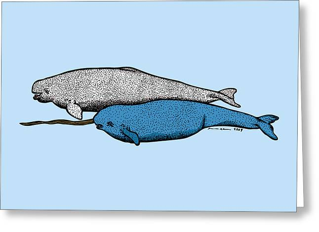 Whale Drawings Greeting Cards - Beluga and Narwhal Whales Greeting Card by Karl Addison