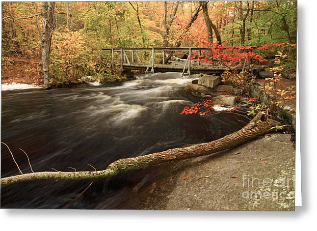 Stepping Stones Greeting Cards - Ben Utter Trail Greeting Card by Jim Beckwith