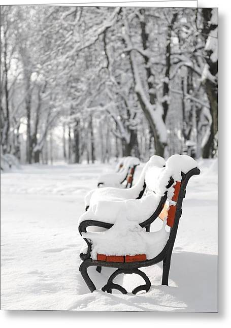 Blizzard Scenes Greeting Cards - Benches in the snow Greeting Card by Jaroslaw Grudzinski