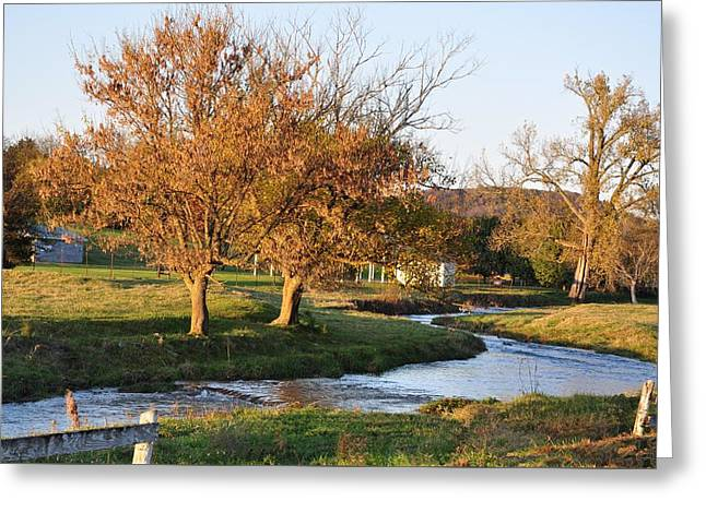 Tennessee Farm Greeting Cards - Bending Creek Greeting Card by Jan Amiss Photography