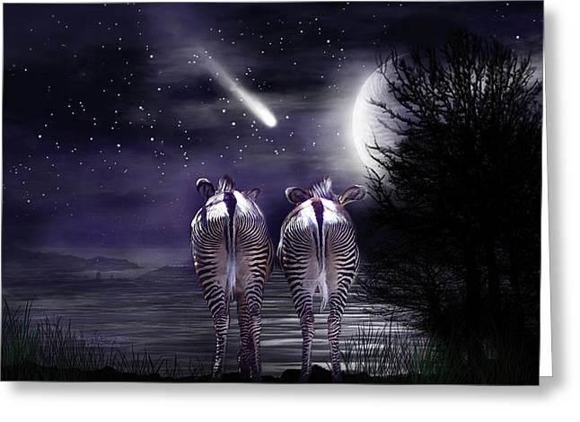 Beneath A Zebra Moon Greeting Card by Carol Cavalaris