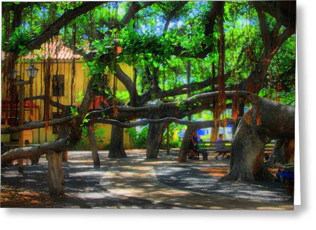 Lahaina Greeting Cards - Beneath the Banyan Tree Greeting Card by DJ Florek