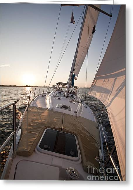 Sailboats In Harbor Greeting Cards - Beneteau 49 Sailing Yacht close hauled charleston sunset Sailboat Greeting Card by Dustin K Ryan