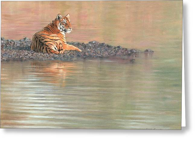 Bengal Tiger Greeting Card by David Stribbling