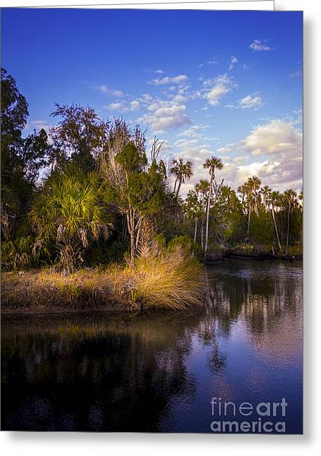Park Scene Greeting Cards - Bent Stream Greeting Card by Marvin Spates