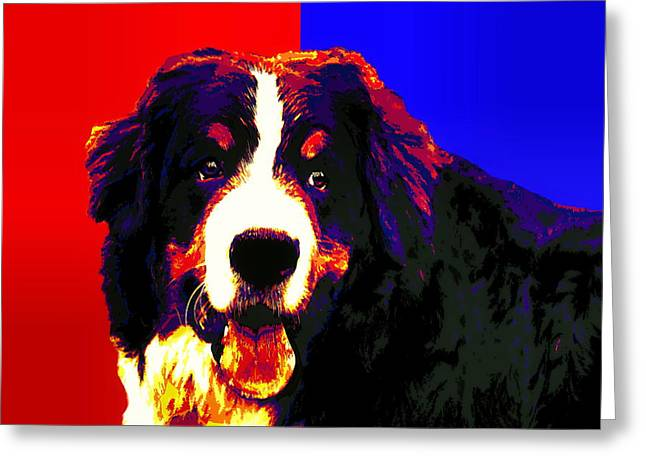 Best Friend Greeting Cards - Bernese Mountain Dog Greeting Card by Alexey Bazhan