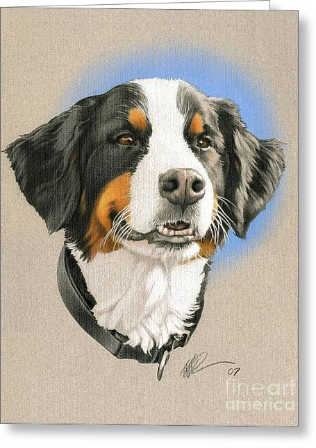 Photo-realism Drawings Greeting Cards - Bernese Mountain Dog Greeting Card by Marshall Robinson