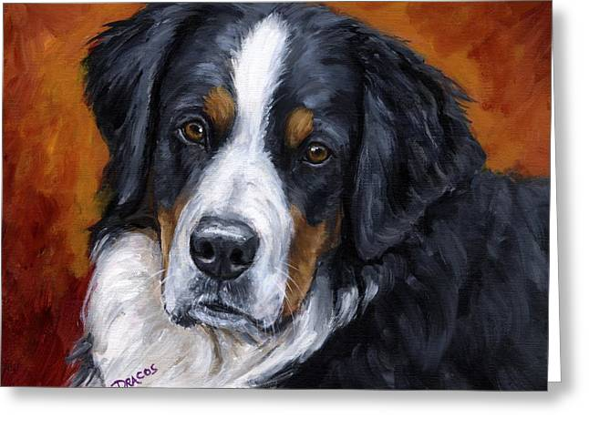 Berner Greeting Cards - Bernese mountain dog on rust Greeting Card by Dottie Dracos