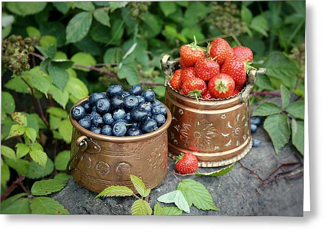 Harvest Art Greeting Cards - Berries Harvest Greeting Card by Vicky Adams